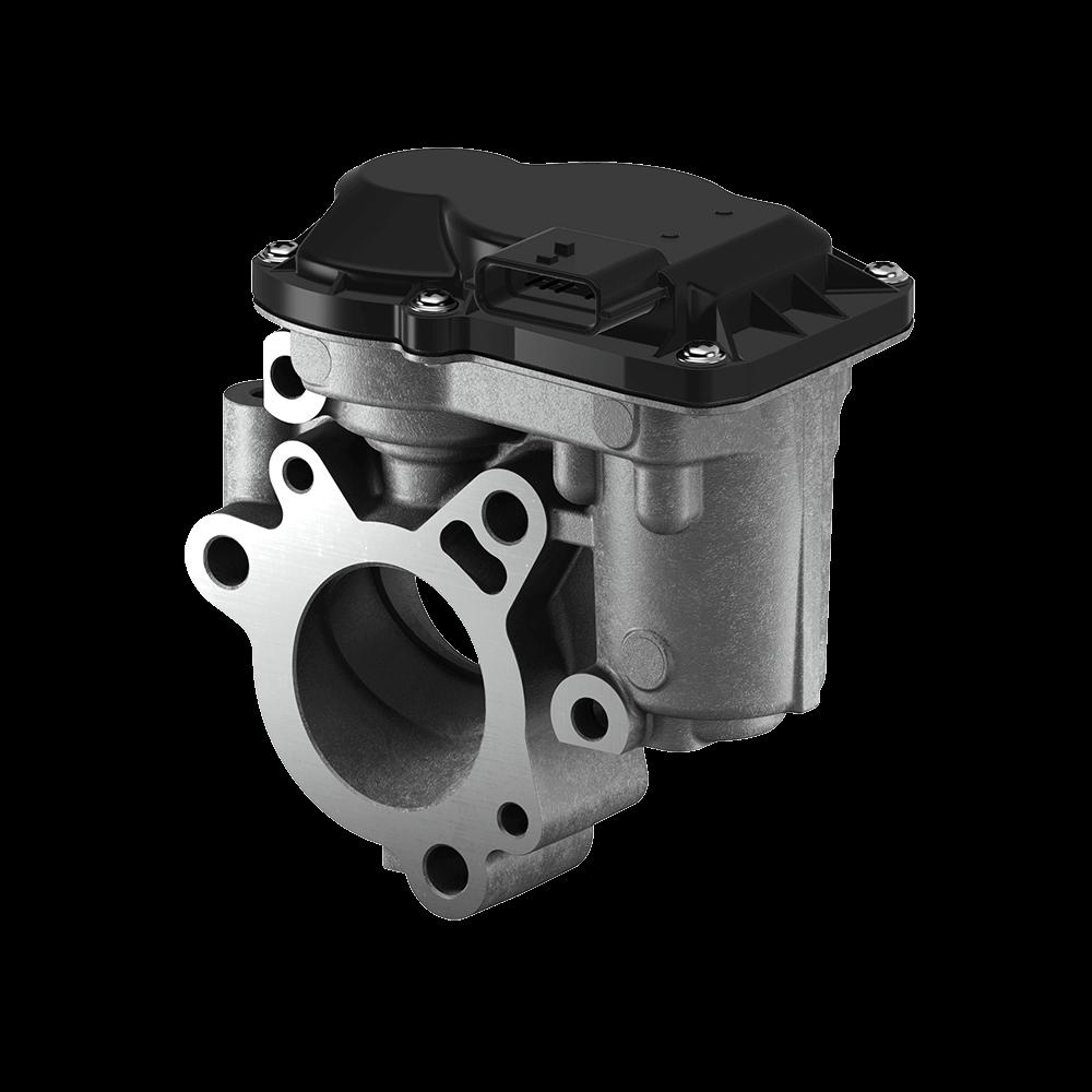 Exhaust Gas Recirculation (EGR) Valve