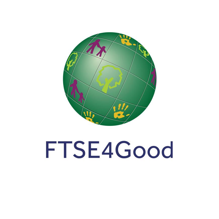 evaluation-img-ftse4-good